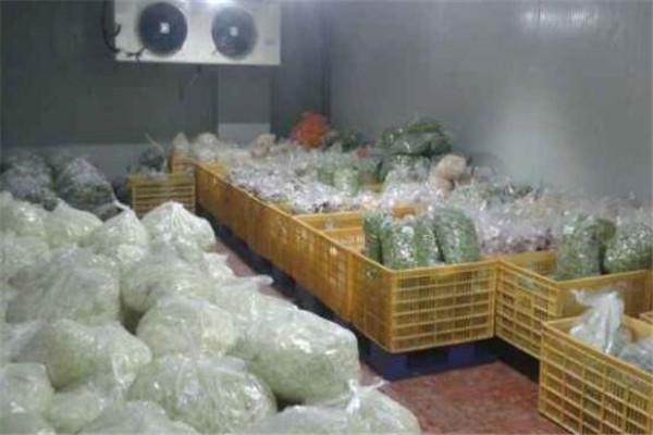 果蔬保鲜冷库打造更优品质
