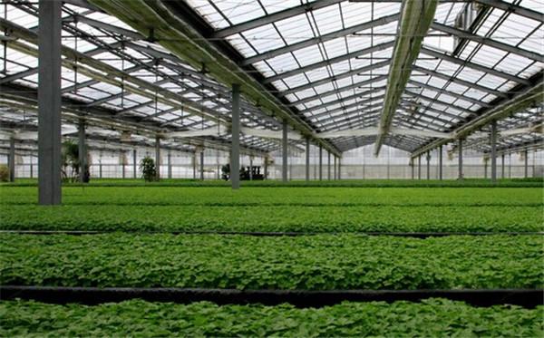 温室大棚控制技术的发展历程