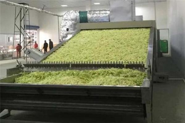 蔬菜烘干机具有天然的发展良机